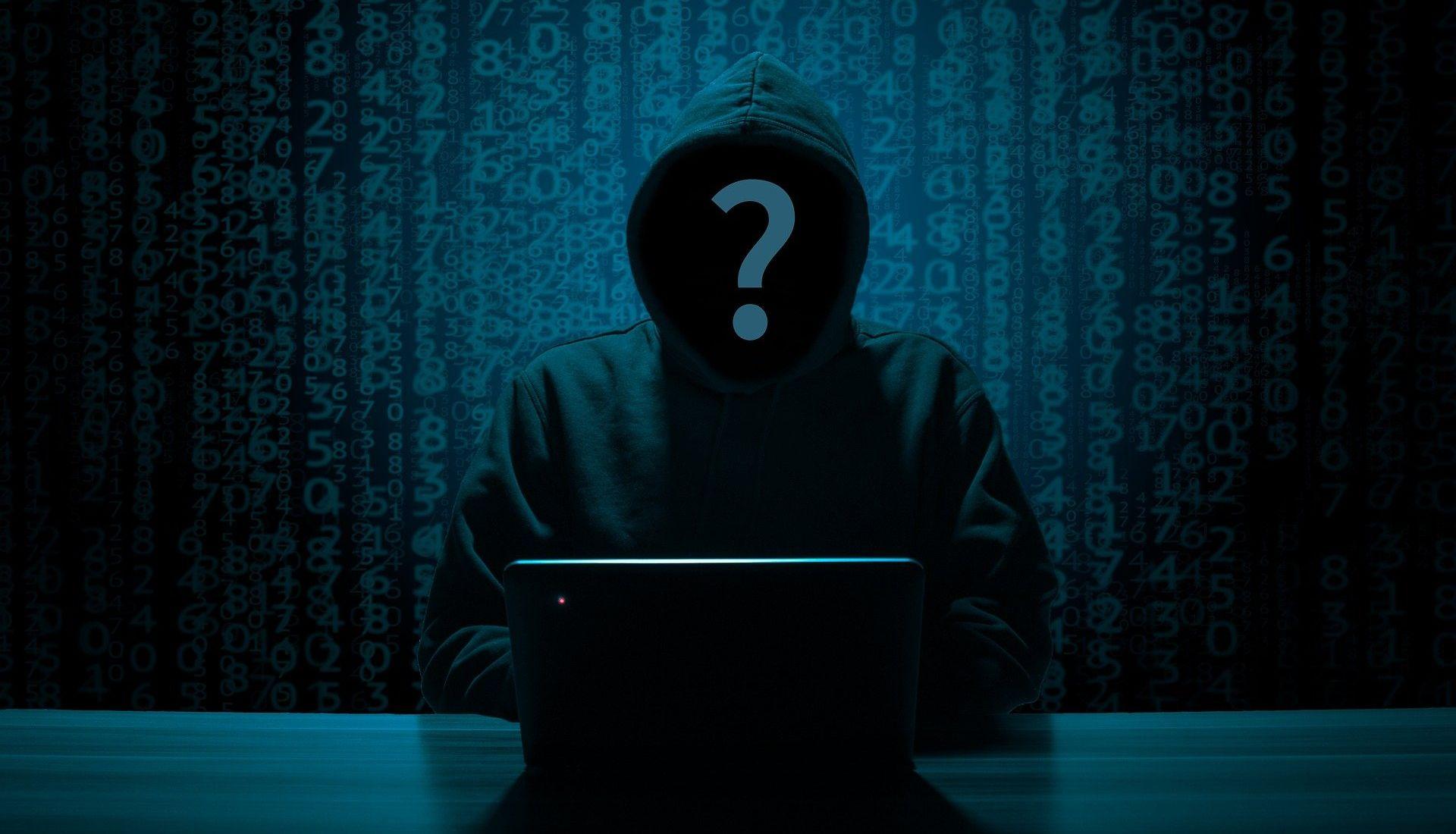 Les hackers et les pirates