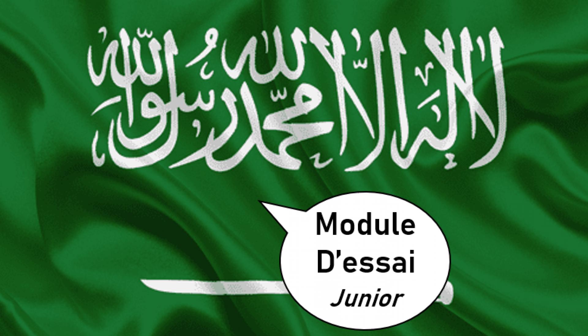 Arabe Junior Essai