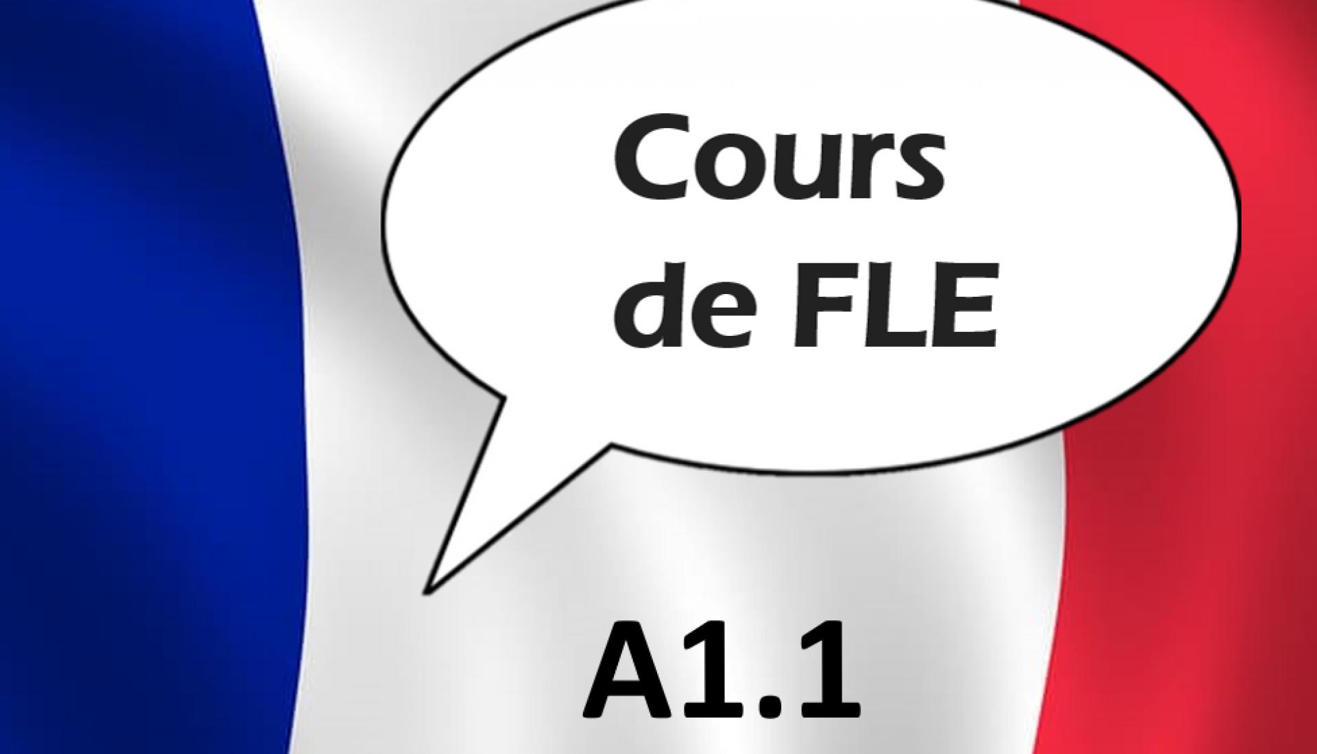 Français Langue Etrangère A1.1