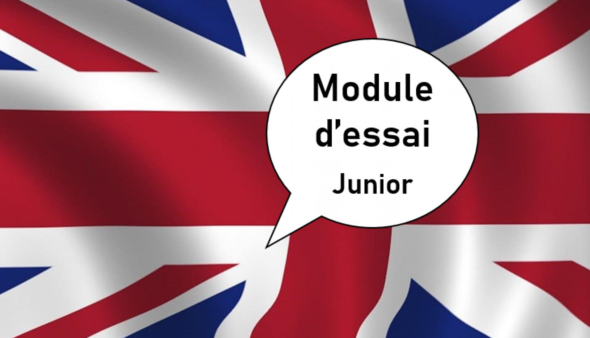 Anglais junior Débutant 1 Essai