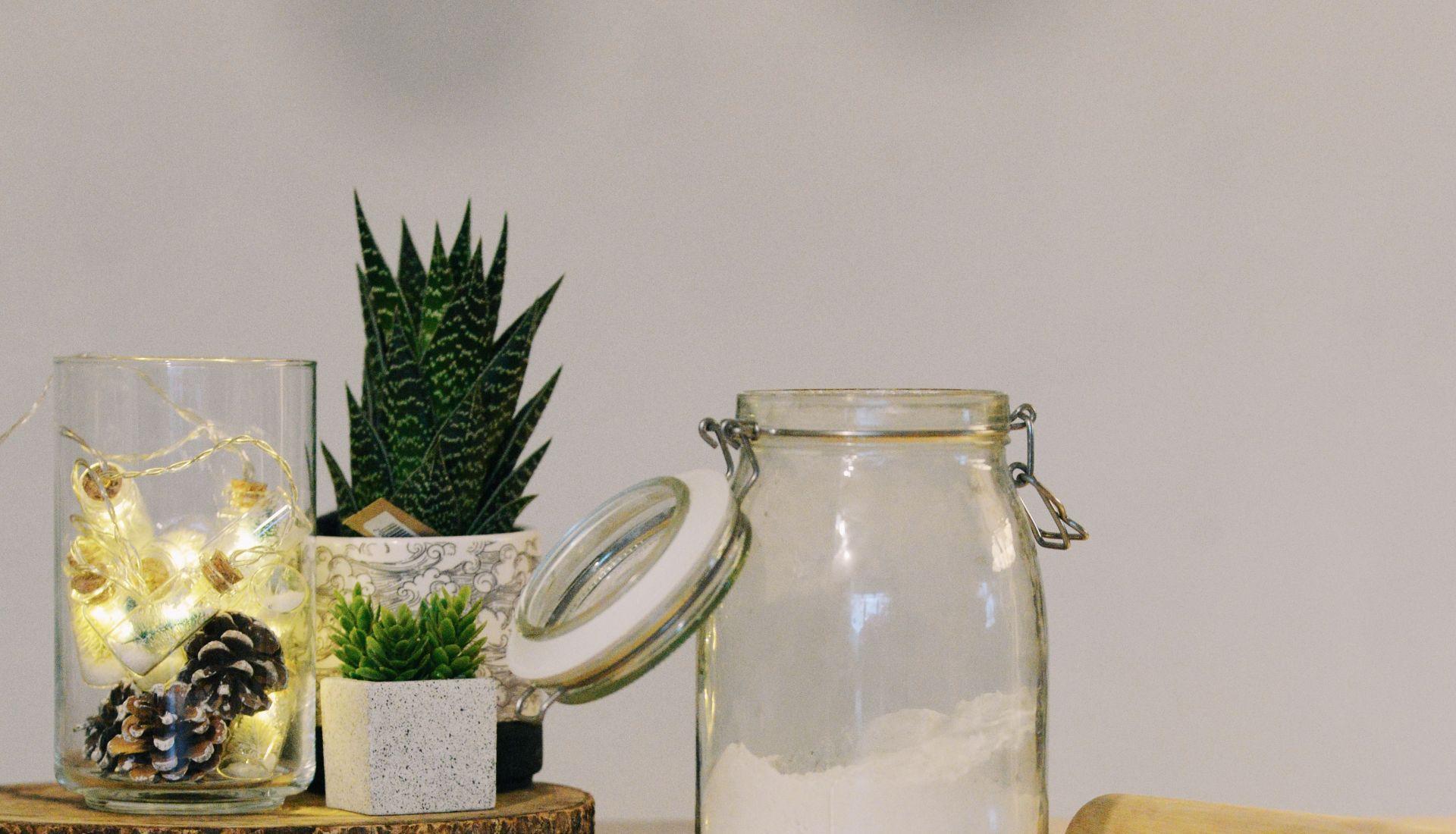 Les plantes sauvages alimentaires et médicinales